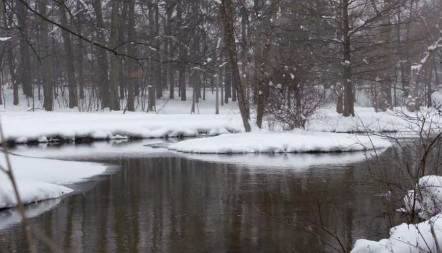Winter Scene – Island In A Stream