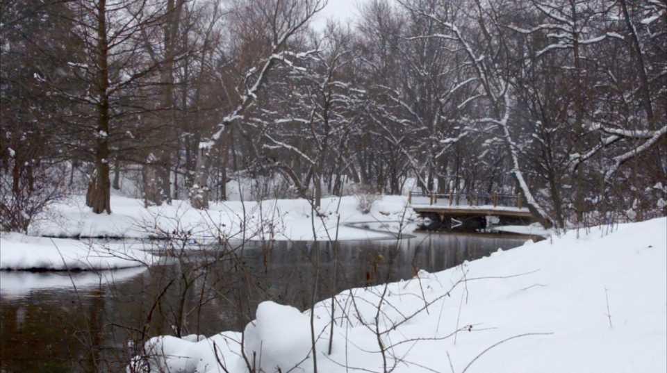 Snowy River Scene 002