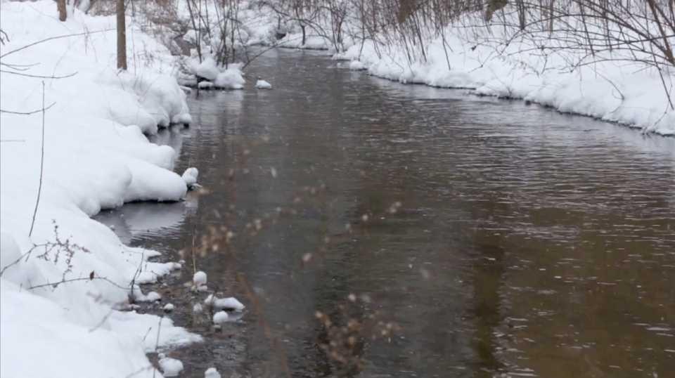 Snowy River Scene 005