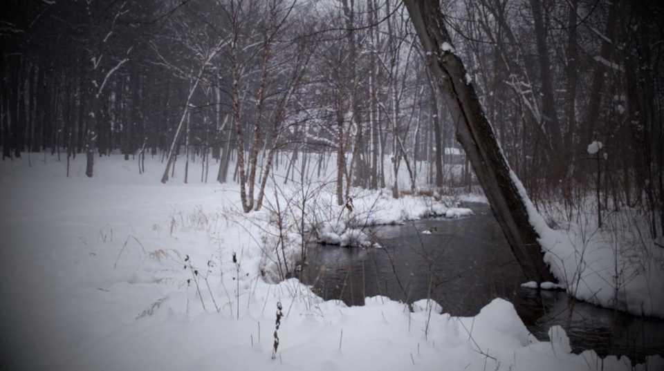 Snowy River Scene 006