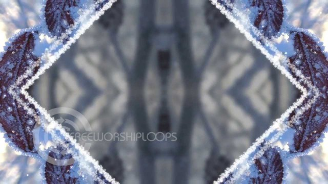 Frozen Branches Kaleidoscope Background